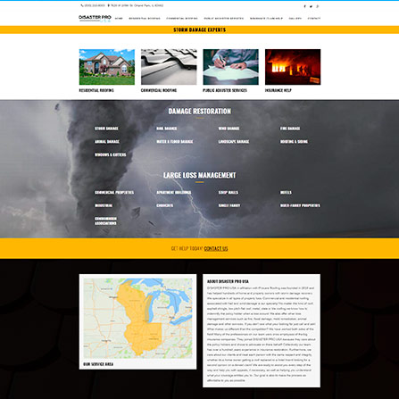 Disaster Pro USA Website